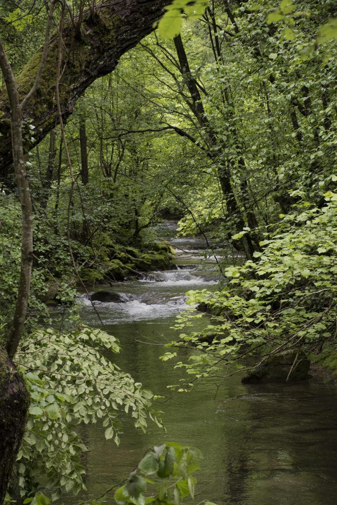 Kanjon reke Nere