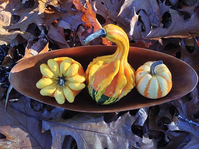Jesenji ukras vašeg doma- skinuto sa interneta