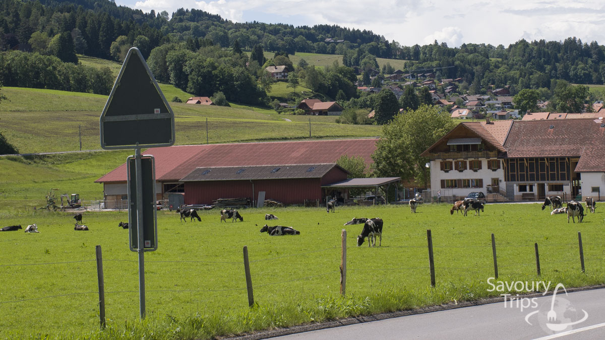 Trip to Gruyere, Top 10 attractions
