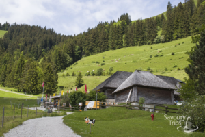 Top 10 attraction in Gruyere