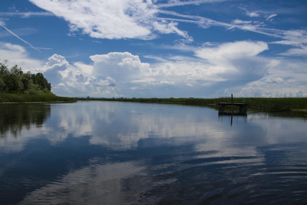 Prirodni rezervat Zasavica