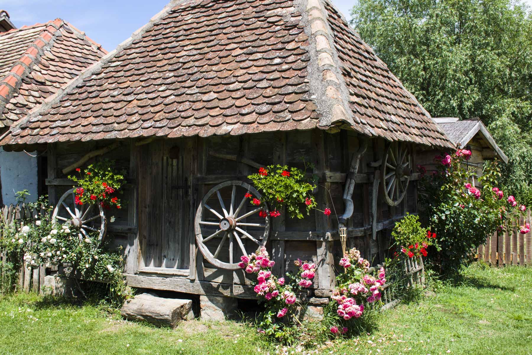 Old Serbian house, Visit Zasavica