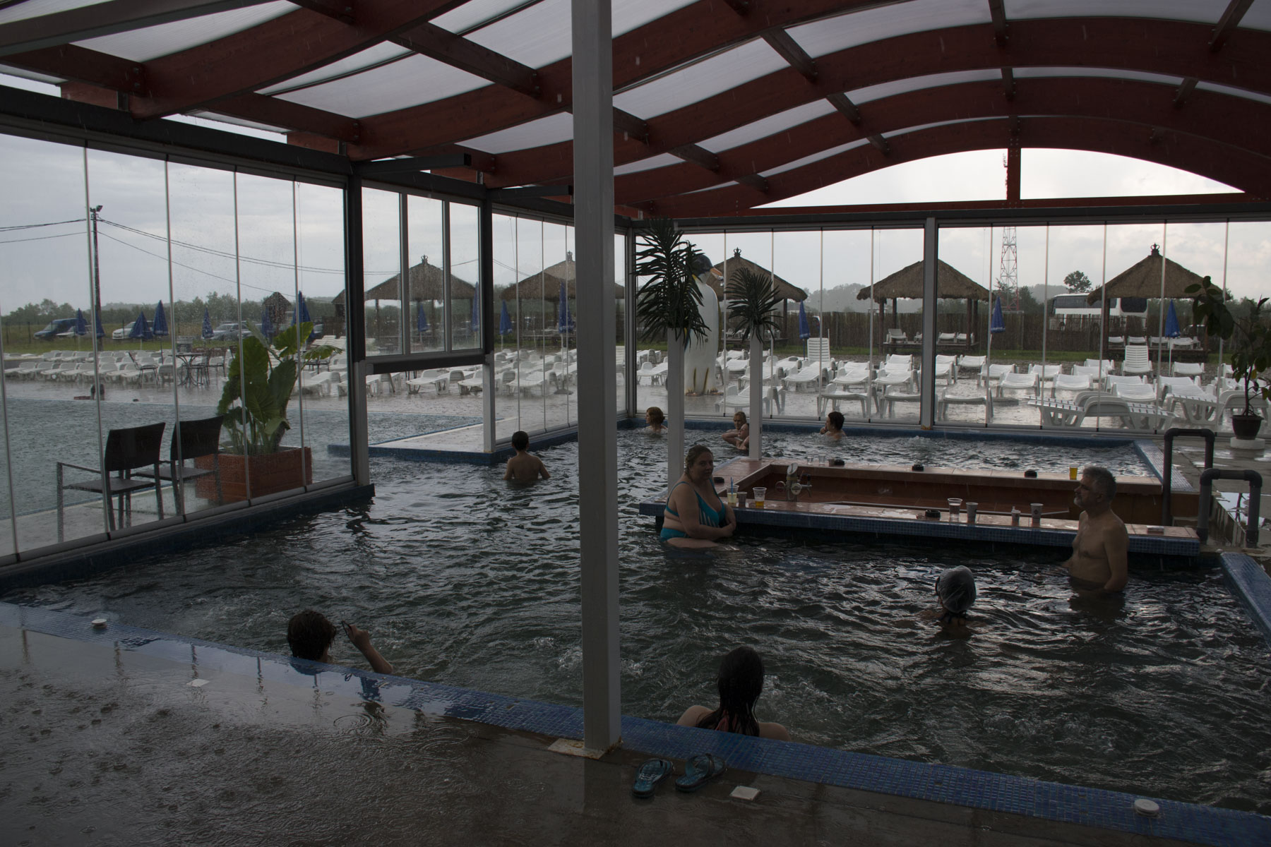 Closed pool. Visit Zasavica