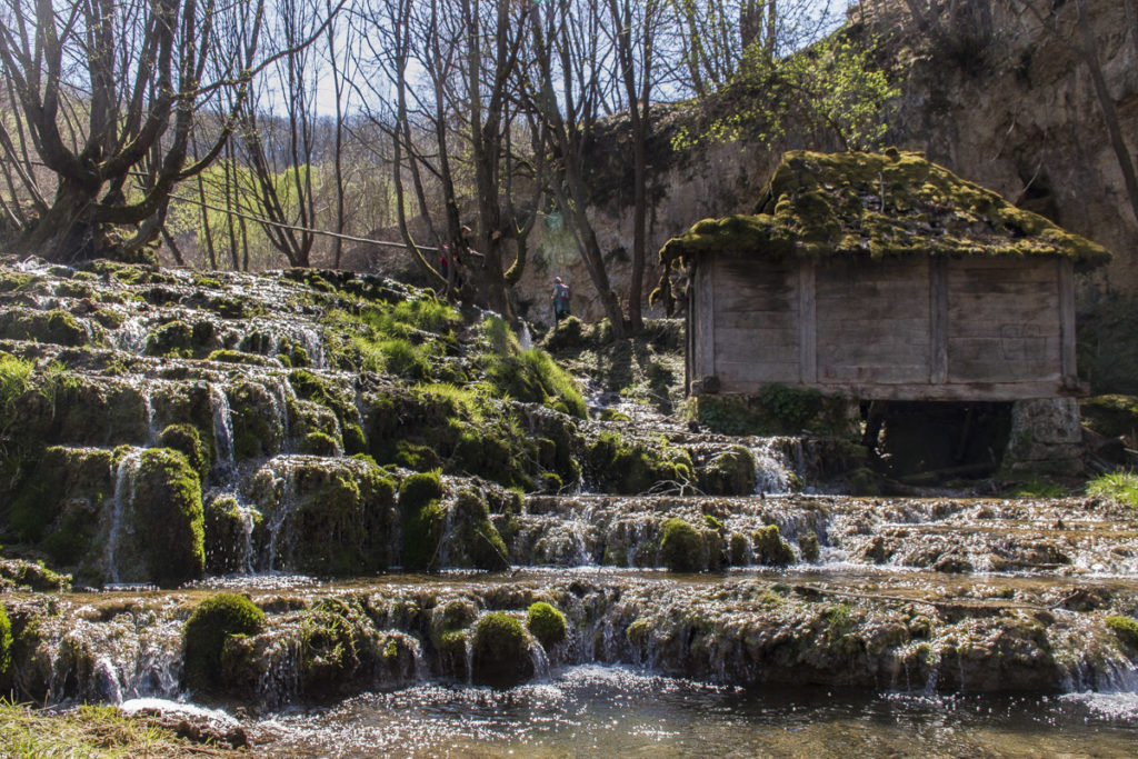 Why we love Taor's springs (And you should too)?